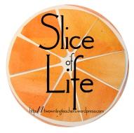 slice of life 2014