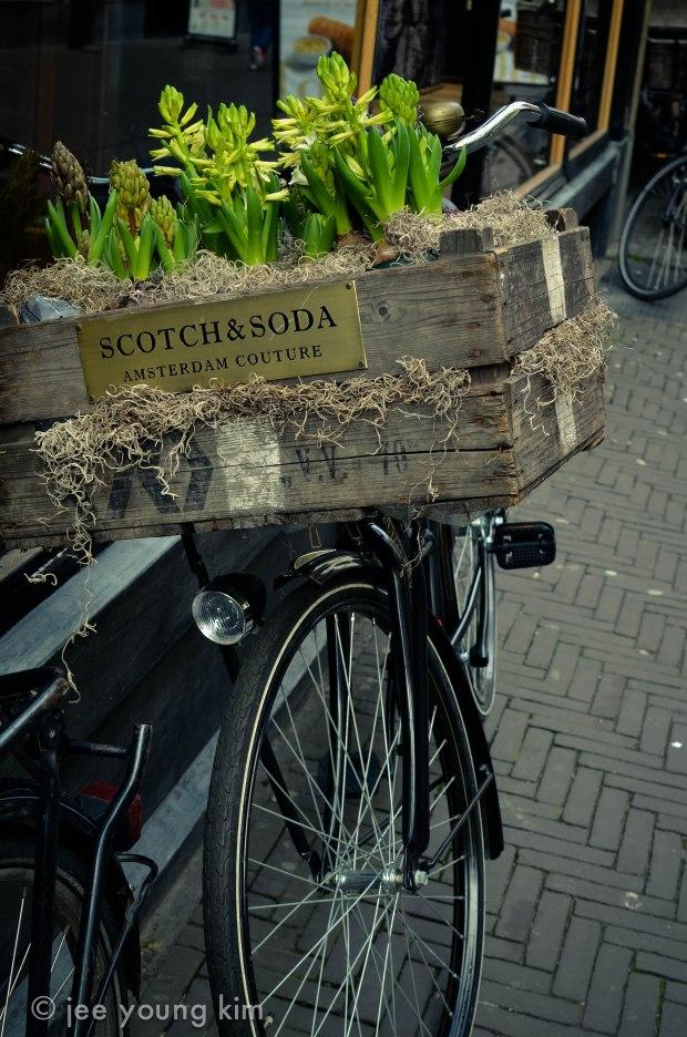 amsterdam-1485
