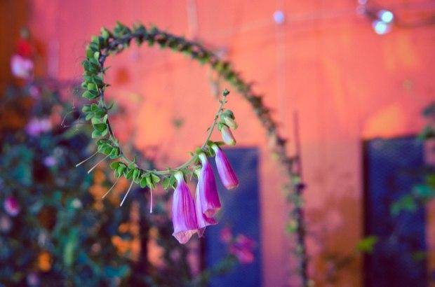 gardensbythebay-1181