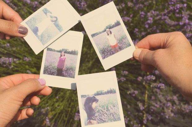 lavender-0273