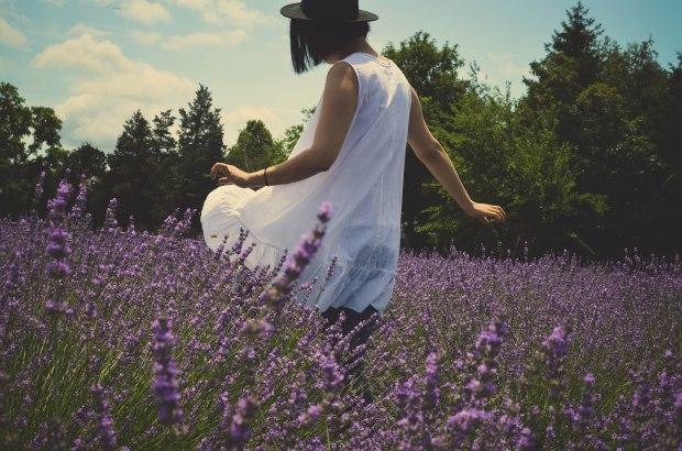 lavender-0277