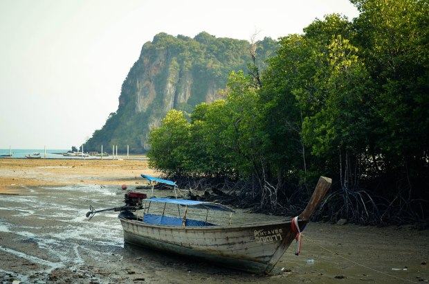 thailand-0289